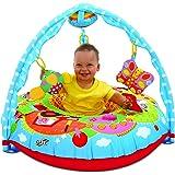 Galt Toys 1004060 Playnest and Gym Farm