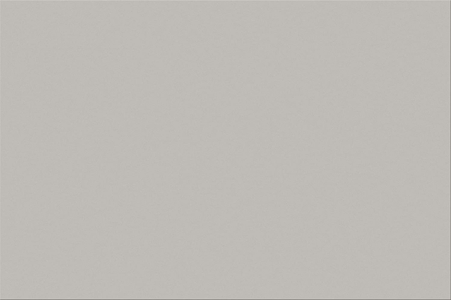 Pacon SunWorks Construction Paper, 12 x 18, 100-Count, Gray (8808) 12 x 18 Pacon Corp.