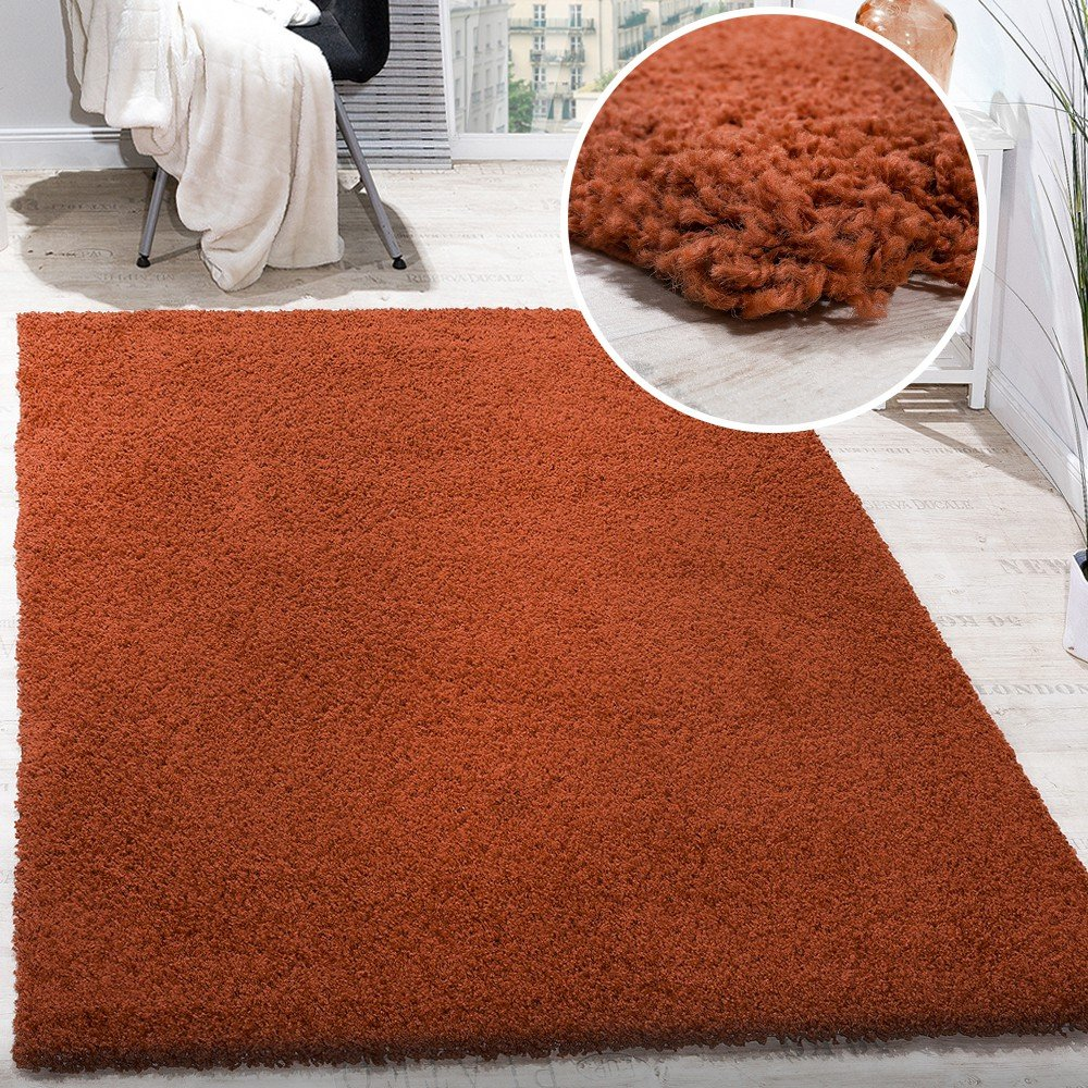 Paco Home Shaggy Hochflor Langflor Teppich Sky Einfarbig in Terrakotta, Grösse 200x280 cm