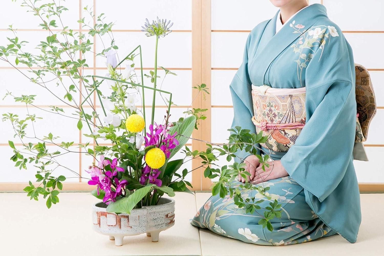 Rectangle 2.7-2.0, Gold Hanakatsu Kenzan Flower Arrangement Ikebana Flower Frog Needle Point Holder Professional