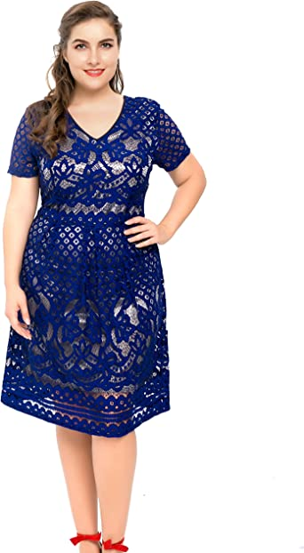 PLUS Size Floral Lace Skater Dress