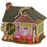 Department 56 Halvl the Skeleton House Lit_house