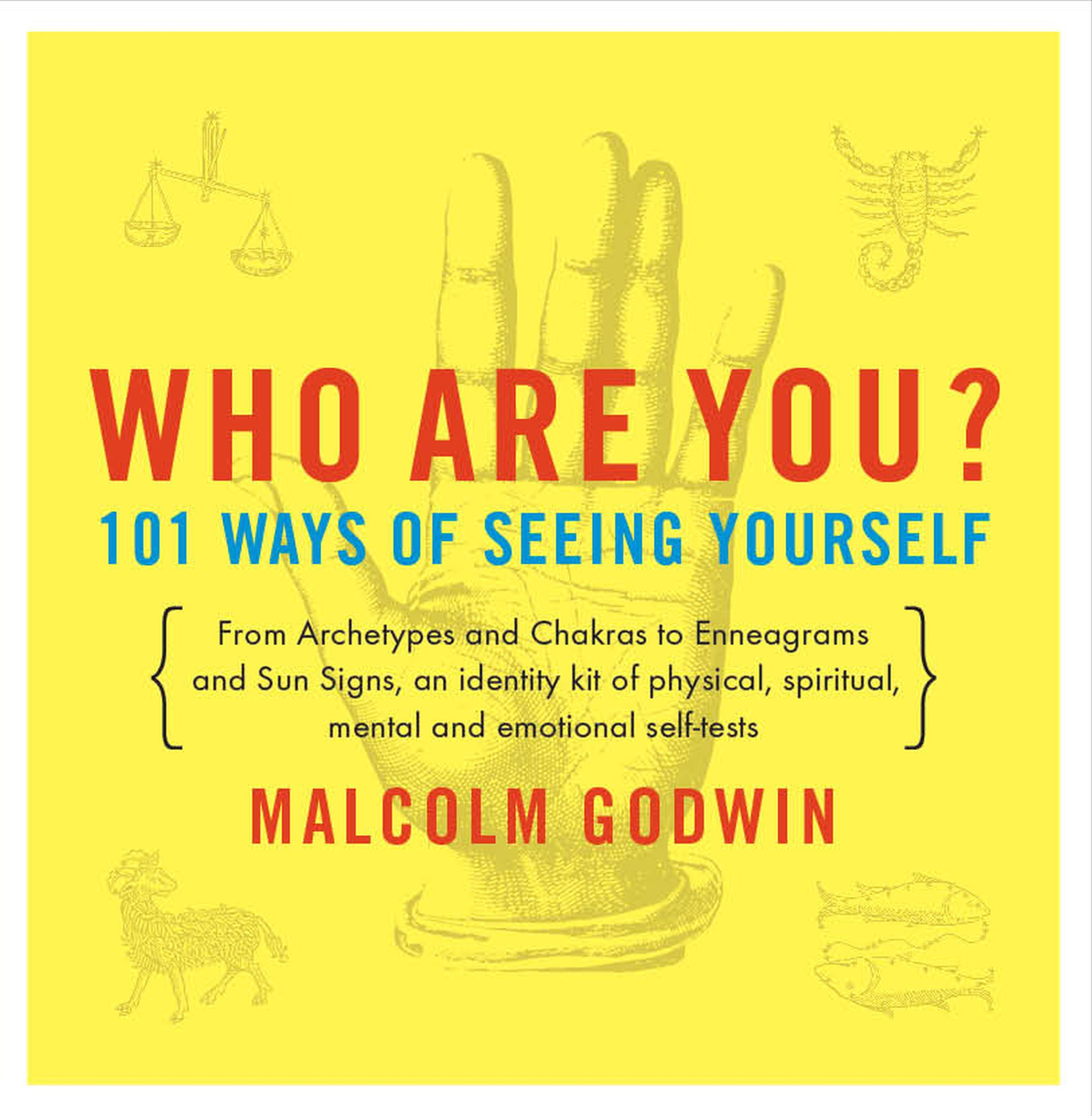 101 Ways of Seeing Yourself (Compass): Malcolm Godwin: 9780140196092:  Amazon.com: Books