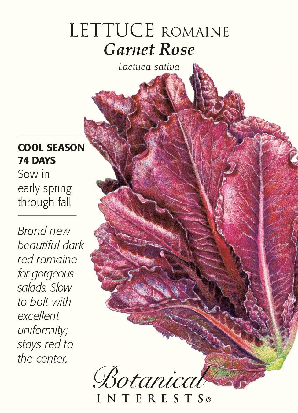 Garnet Rose Romaine Lettuce Seeds - 1 gram