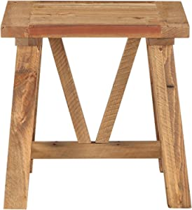 Modus Furniture Harby End Table, Rustic Tawny