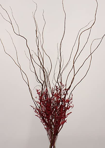 Amazon Greenfloralcrafts Diy Curly Willow With Red Caspia Vase