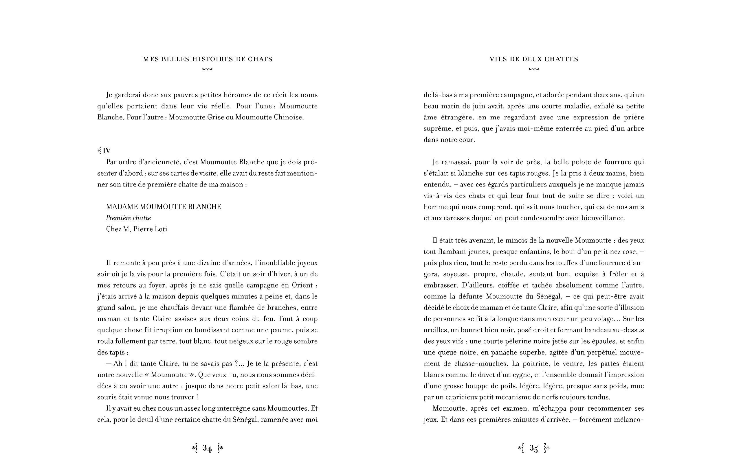 Mes Belles Histoires De Chats BRIGITTE BULARD CORDEAU 9782812300899 Amazon Books