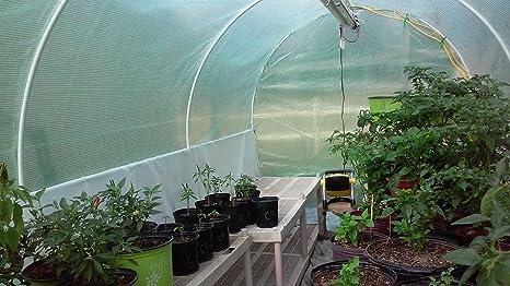 KMS - Toldo 2 puertas de polietileno reforzada 12 x 7 x 7 portátil desmontable de gran tamaño de efecto invernadero verde jardín caliente casa: ...