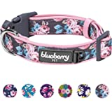 """Blueberry Pet 6 Patterns Soft & Comfy Welcoming Spring Rose Flower Prints Girly Padded Dog Collar, Large, Neck 18""""-26"""", Adjustable Collars for Dogs"""
