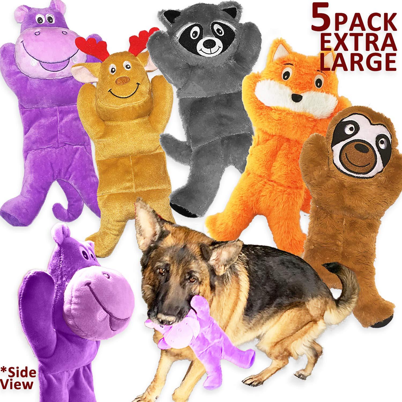 Jalousie 5 Pack Dog Toys Assortment Value Bundle Dog Plush Toys Dog Squeak Toys Dog Squeaky Toys Assortment for Medium…