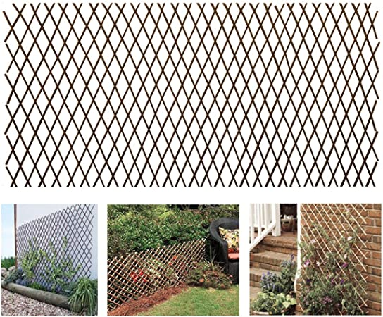 Framed English Willow Trellis Fencing