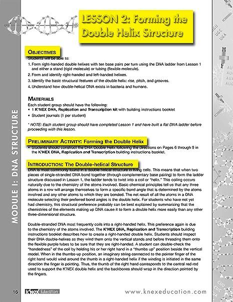 Amazon.com: K'NEX Education – DNA Replication and Transcription ...