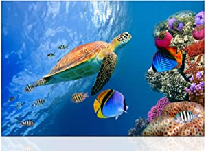Bathroom Wall Art Bedroom Blue Decor Modern Sea Turtle Decor Canvas Painting Prints for Living Room Baby Room Colorful Fish Coral Beach Theme Pictures Wall Turtle Decor Size16x24inch