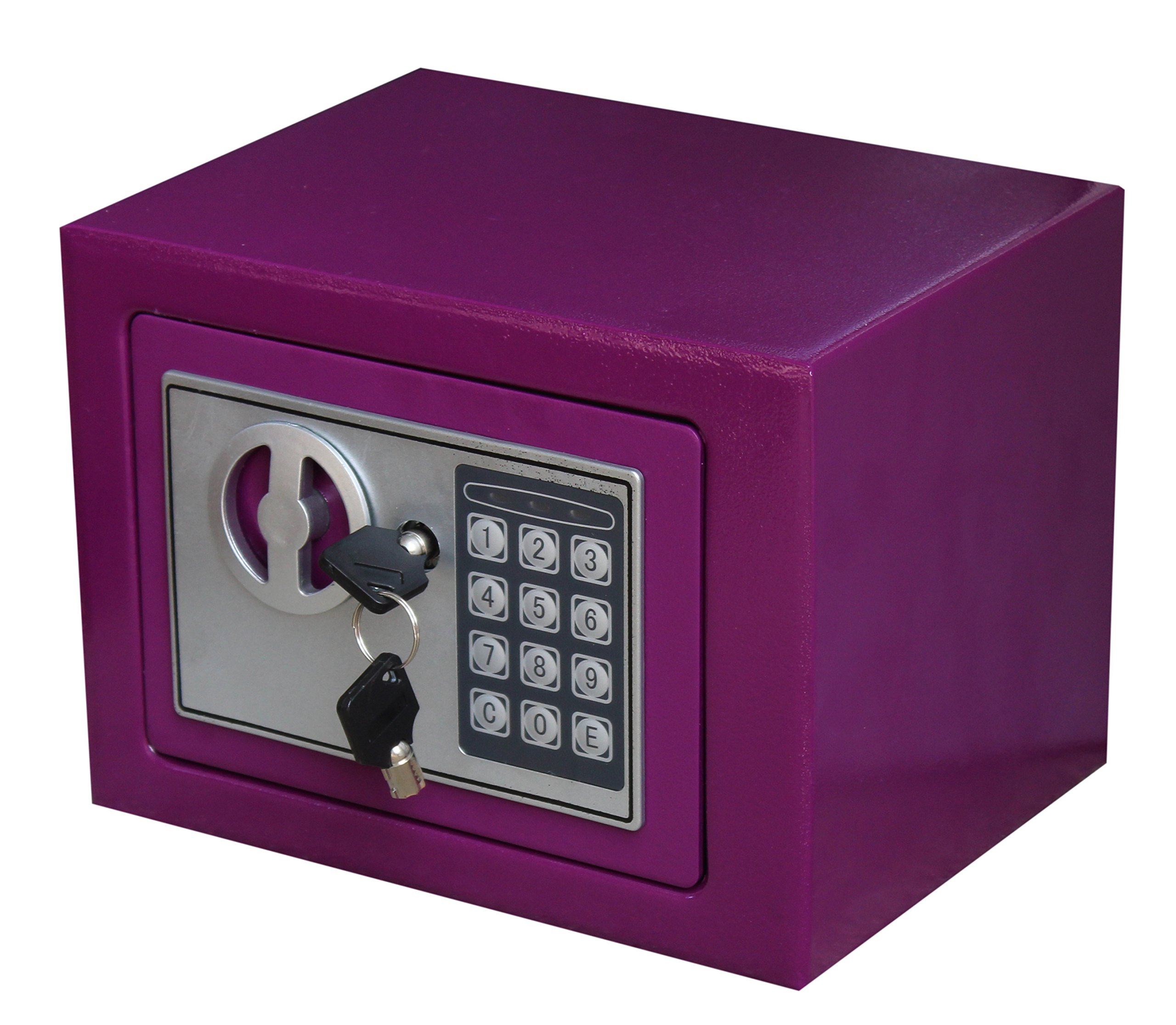 Royal Brands Square Electronic Gun Safe Money Jewelry Passport Home Hotel Office (Purple)