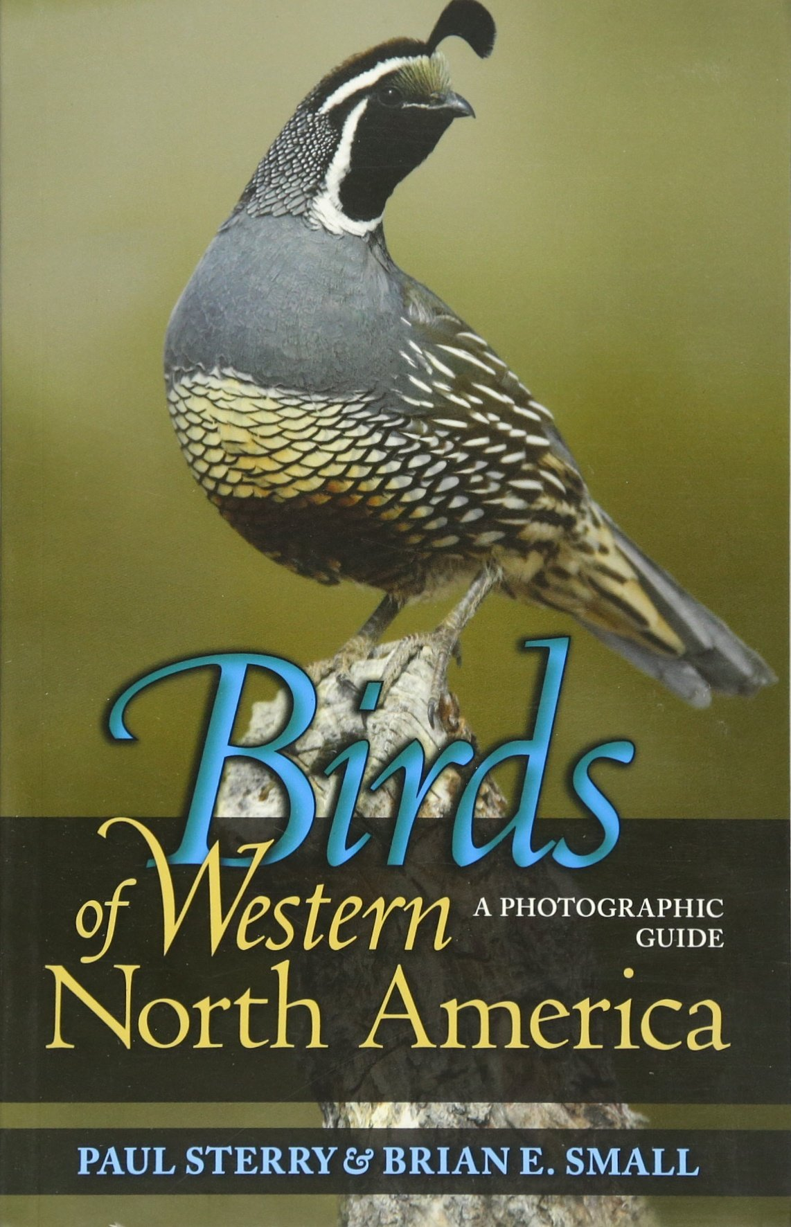birds of western north america a photographic guide princeton