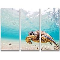 Paul Sinus Art - Stampa Artistica su Tela, Soggetto: Tartaruga Marina Verde, pronta da Appendere