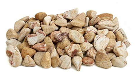 705de210cacbd8 Quarrystore Natural Rainbow Decorative River Pebbles - Approximately 40mm  to 60mm in Size - Ideal Outside