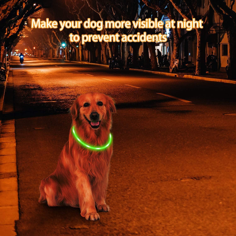 Mitening Hundehalsband Leuchtend 2 St/ück Leuchthalsband Hund LED Hunde Halsband USB Wiederaufladbar L/ängenverstellbarer Haustier Sicherheit Kragen f/ür Hunde und Katzen 3 Modus 12 Lichte
