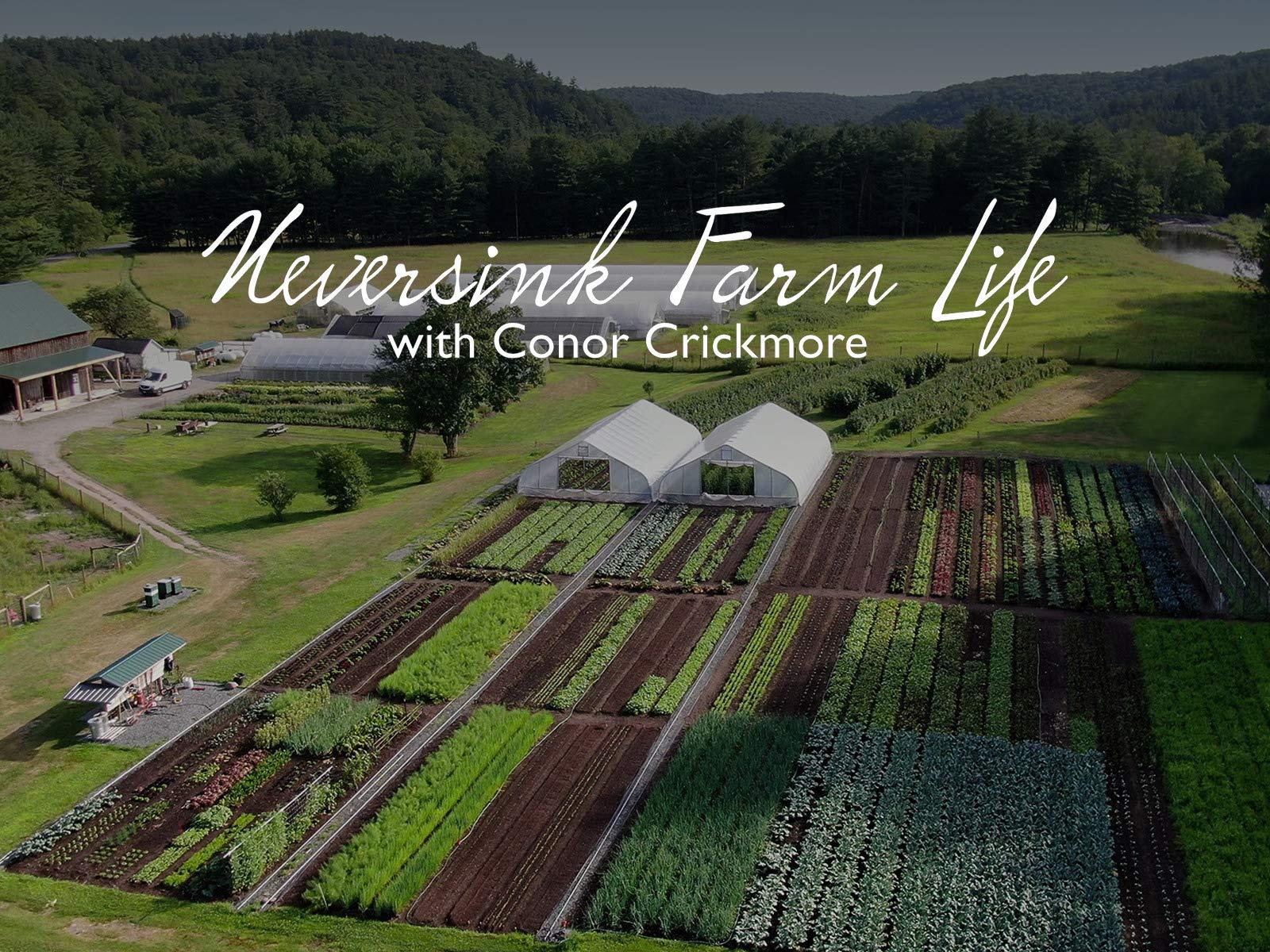 Neversink Farm LIfe