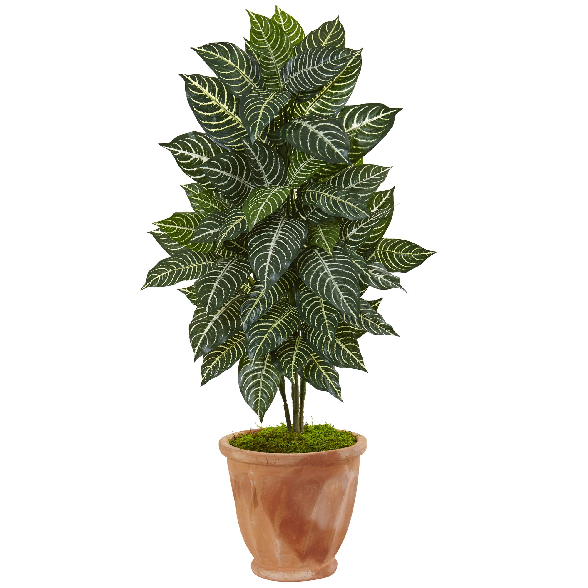"Nearly Natural 42"" Zebra Artificial Plant in Terracotta Planter, Green by Nearly Natural"