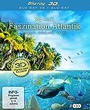 3D Pur – Faszination Atlantik: Paradies der Erde [3D Blu-ray]