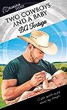 Two Cowboys and a Baby (Dreamspun Desires Book 30) (English Edition)