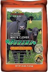 Pennington Durana White Clover Coated 25 Lb