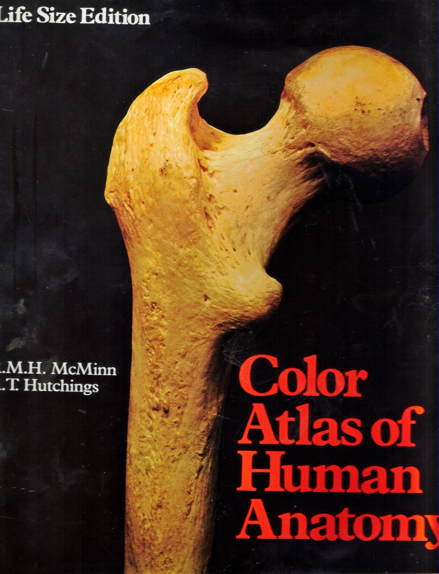 A Colour Atlas of Human Anatomy (Wolfe medical atlases): Robert ...