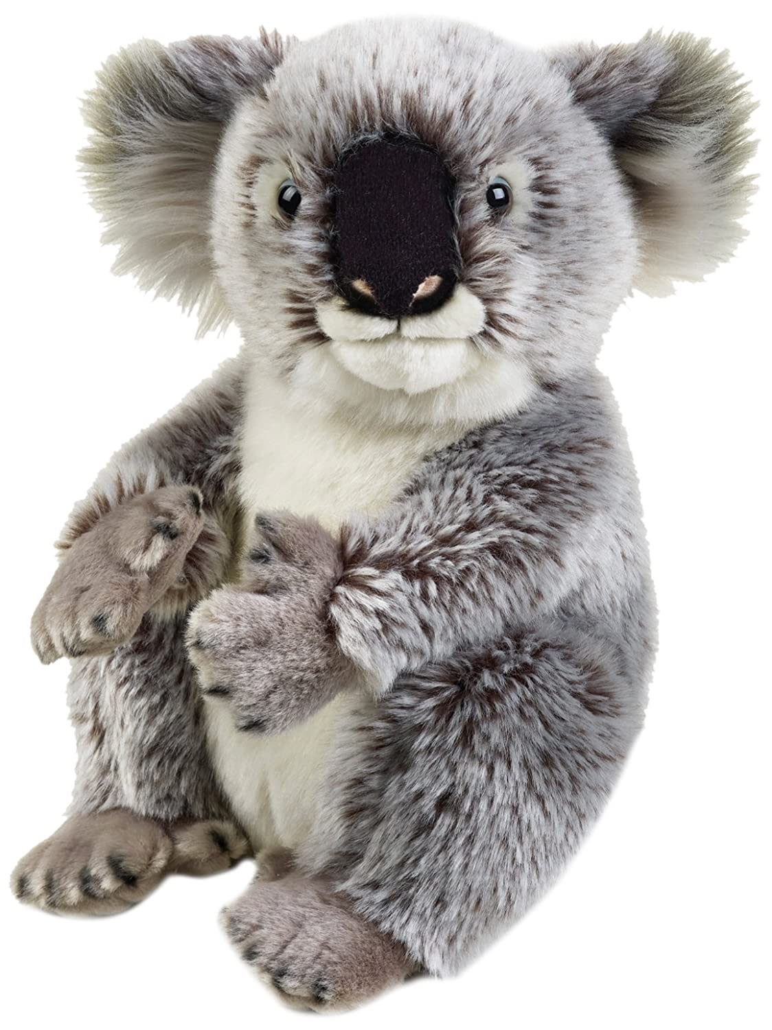 National Geographic - 8004332707080 - Peluche Koala National Geographic