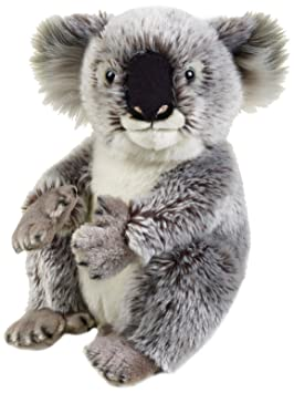 National Geographic - 8004332707080 - Peluche Koala