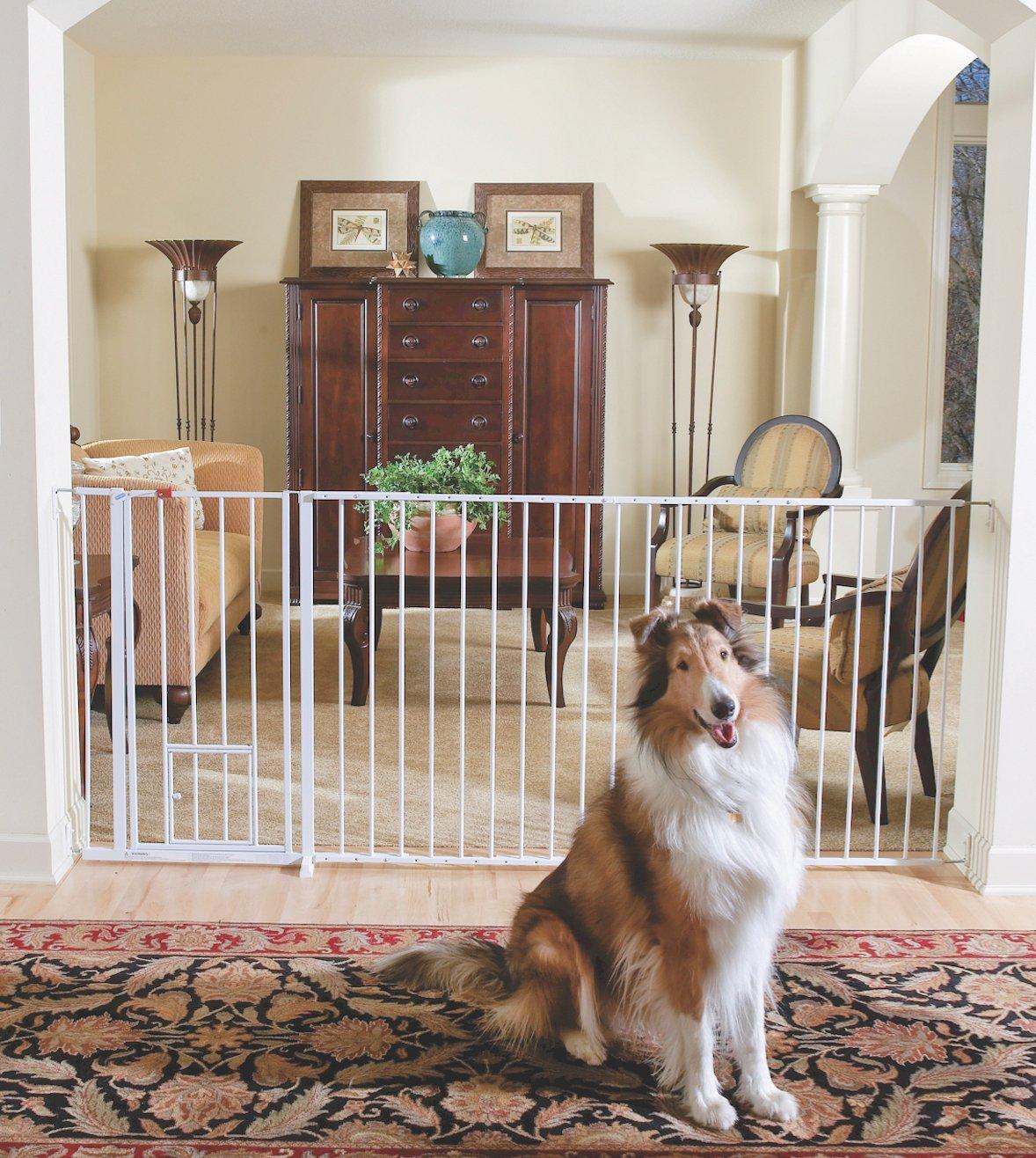 Amazon.com : Carlson Maxi Extra Tall Pet Gate, Expands 51-59 ...