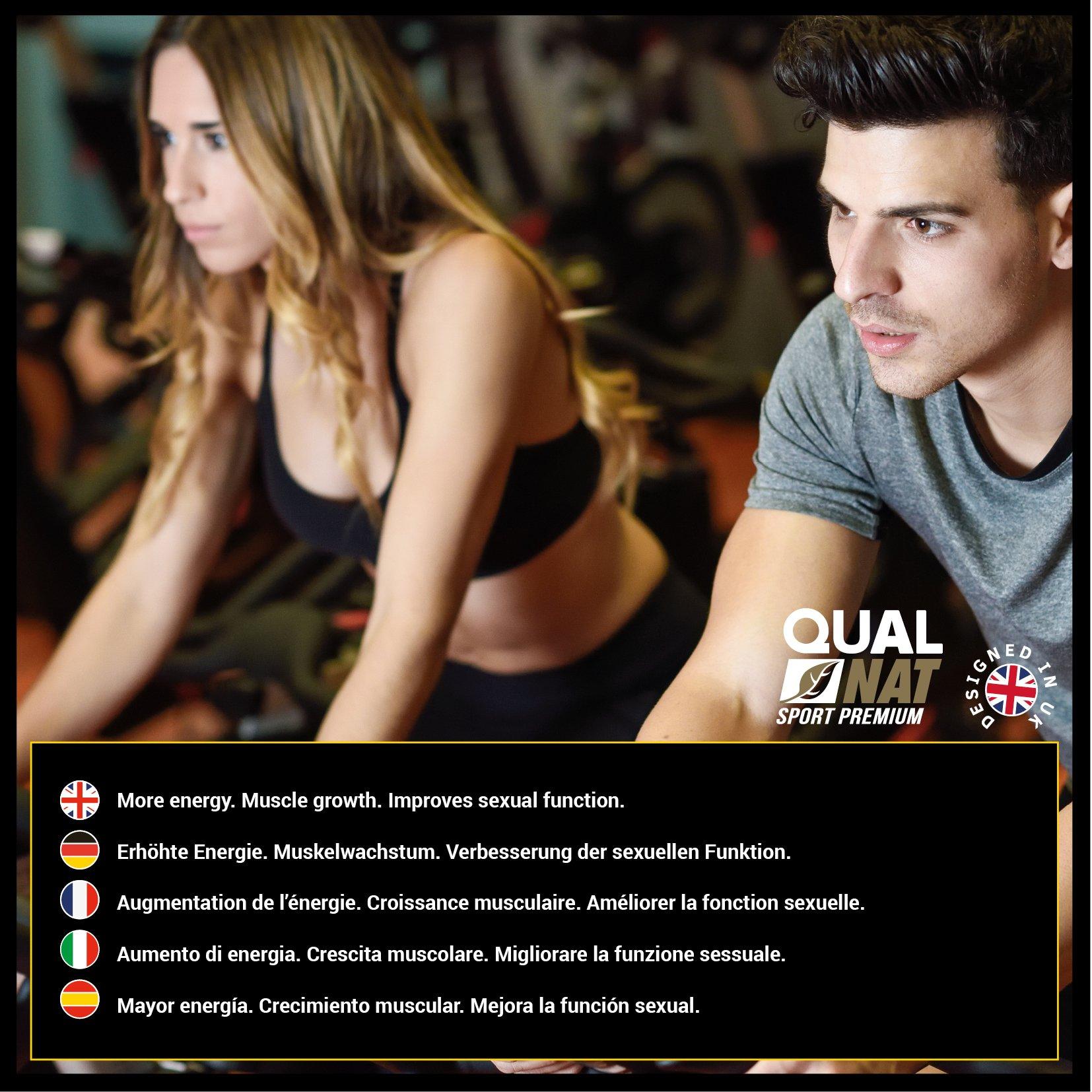 Testostérone Pour Augmenter La Croissance Musculaire et La Force–Complément pour sportifs qui aide à améliorer le rendement de sport–Accroît la résistance et la libido sexuelle–180comprimidos