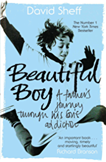 Drugs in american society kindle edition by erich goode health beautiful boy a fathers journey through his sons addiction fandeluxe Gallery