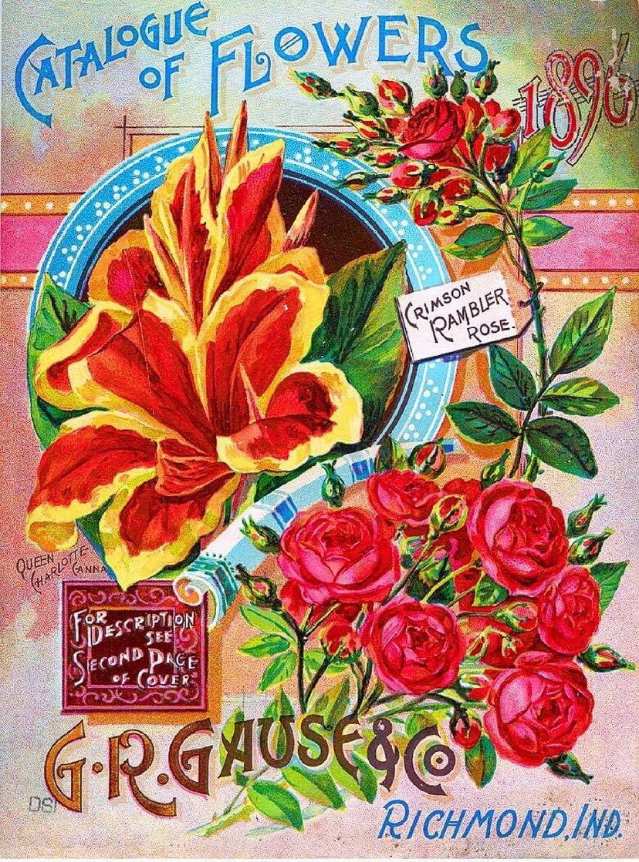 ABLERTRADE - Placa metálica Decorativa 1896 G.R. Gause Rose ...