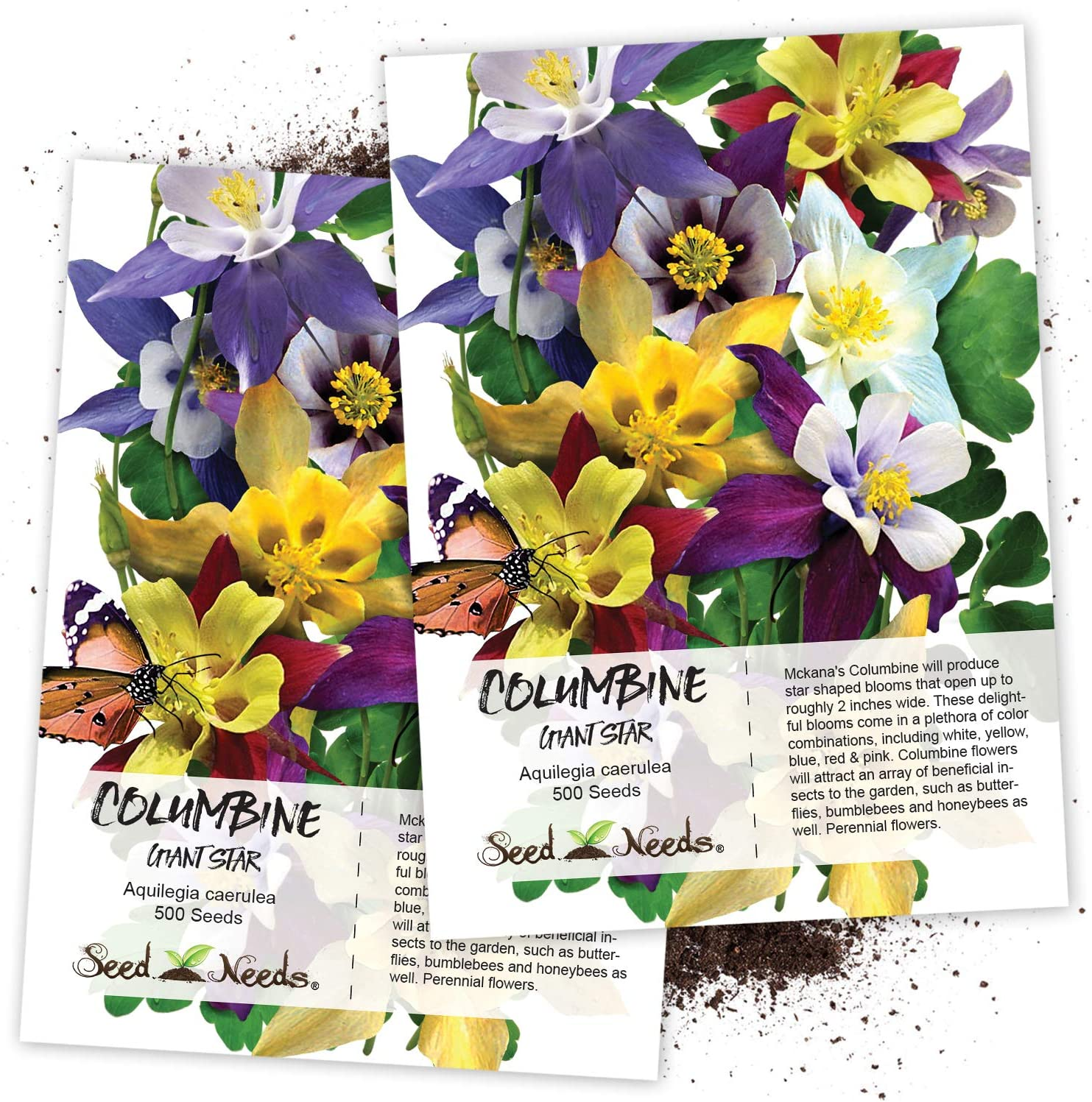 Amazon Com Seed Needs Giant Star Columbine Mix Aquilegia