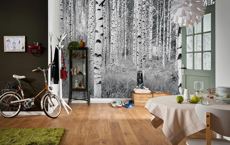 Fototapete schwarz weiß wald  Fototapete - Birkenwald: Amazon.de: Baumarkt
