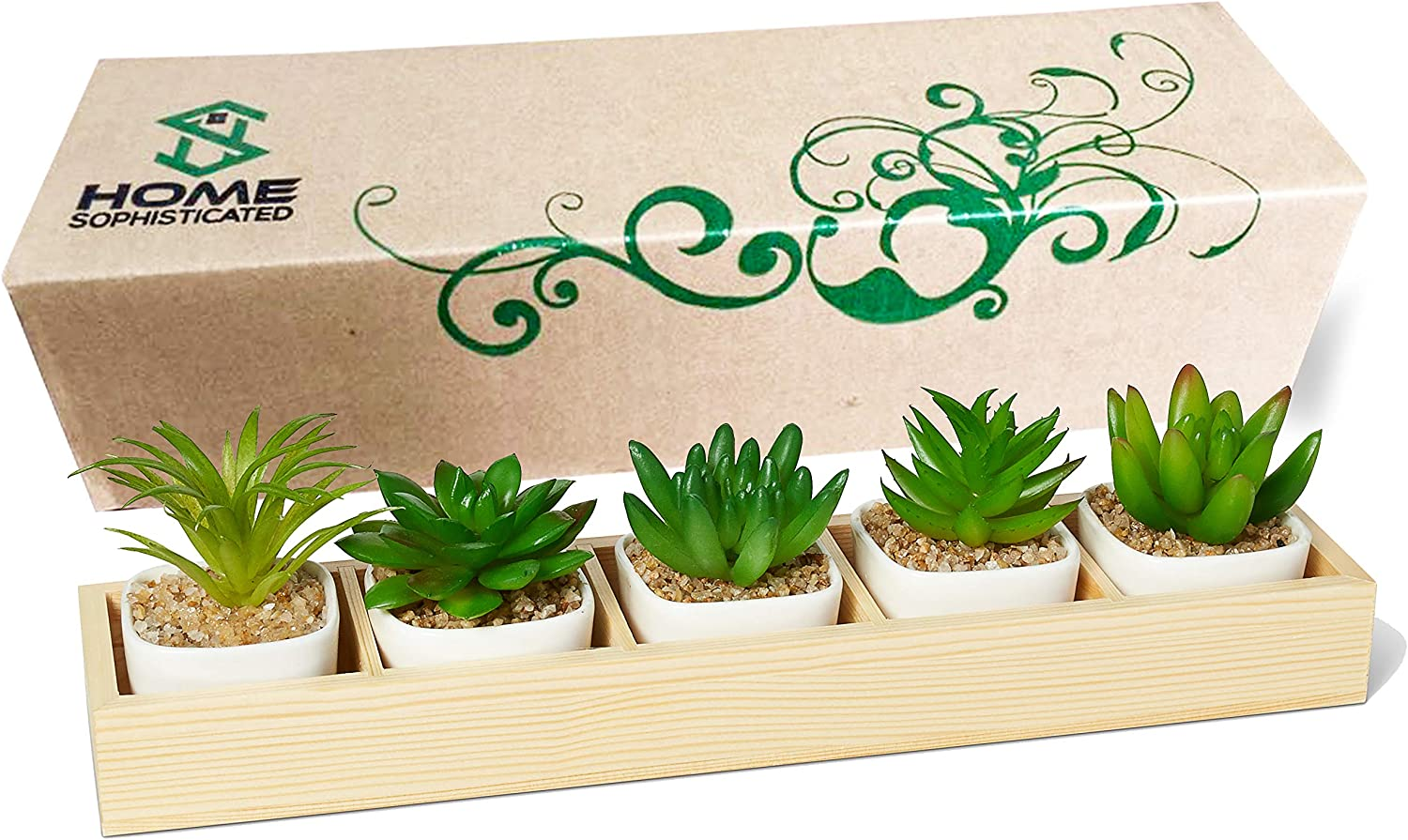 HomeSophisticated-Set of 5 Mini Fake Succulent Cactus Aloe Potted Plant Arrangements-Decorative Assorted Potted Artificial Succulent Plants in White Pots-Succulent Plants Wood Planter Arrangement
