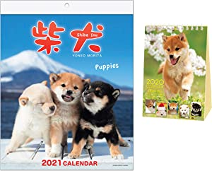 Shiba Inu Wall Calendar with Adorable Shiba Dog Puppies' Pictures (Wall 2021 with Free Desktop 2020)
