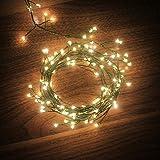 Dailyart 120 Led verde scuro Stringa Luci, Bianco Caldo Luci Di Filo Di Rame Decorazione Luci impermeabile IP44---alimentato a batteria(8 Modes)[Classe energetica A +++]