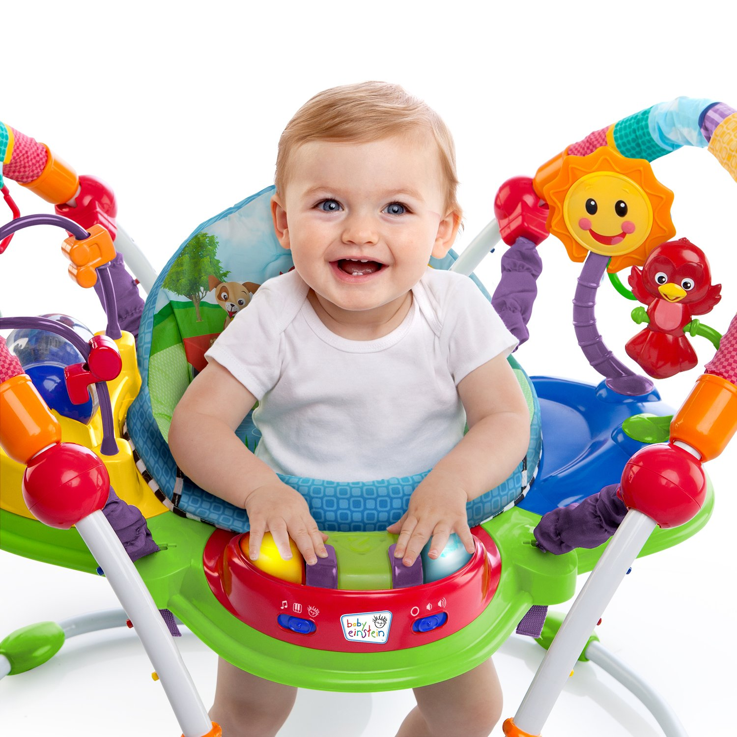 Baby Einstein Activity Jumper Special Edition