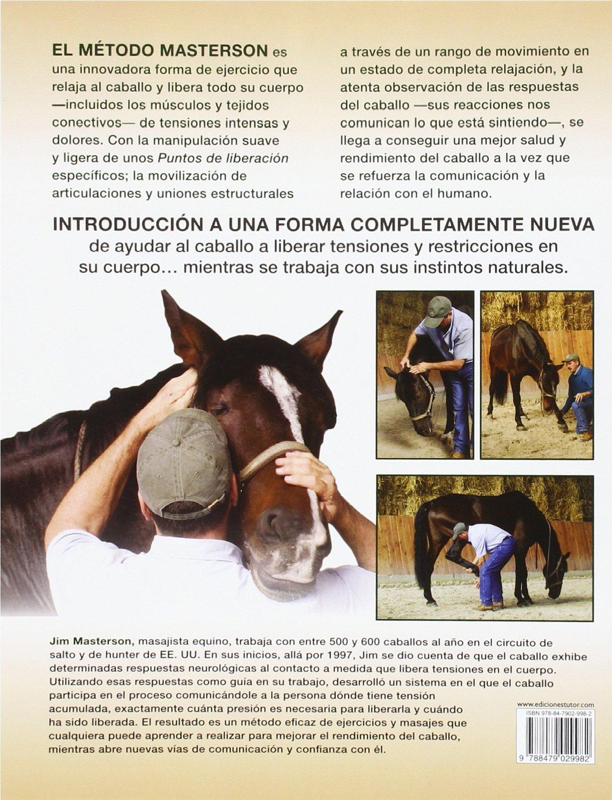 Moderno La Anatomía Del Caballo Para Un Rendimiento Imagen ...