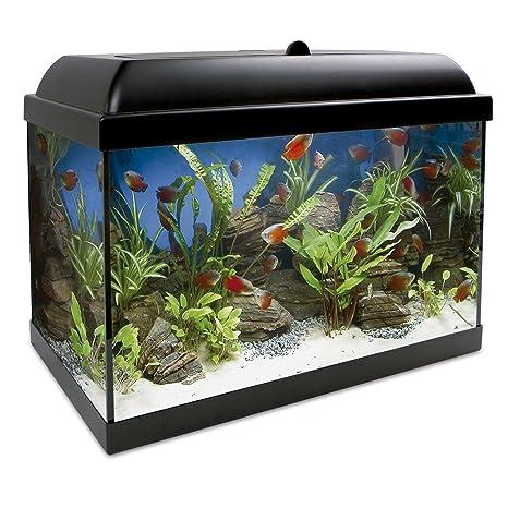 ICA KDI25 Kit Aqua-Led Pro 25 con Filtro Interior, Negro