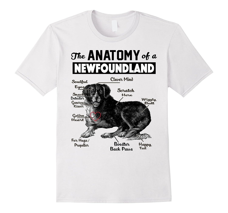 Amazon.com: The anatomy of a Newfoundland Dog shirt: Clothing