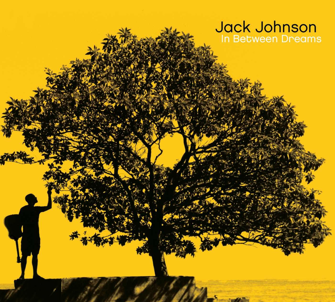 CD : Jack Johnson - In Between Dreams (Digipack Packaging)