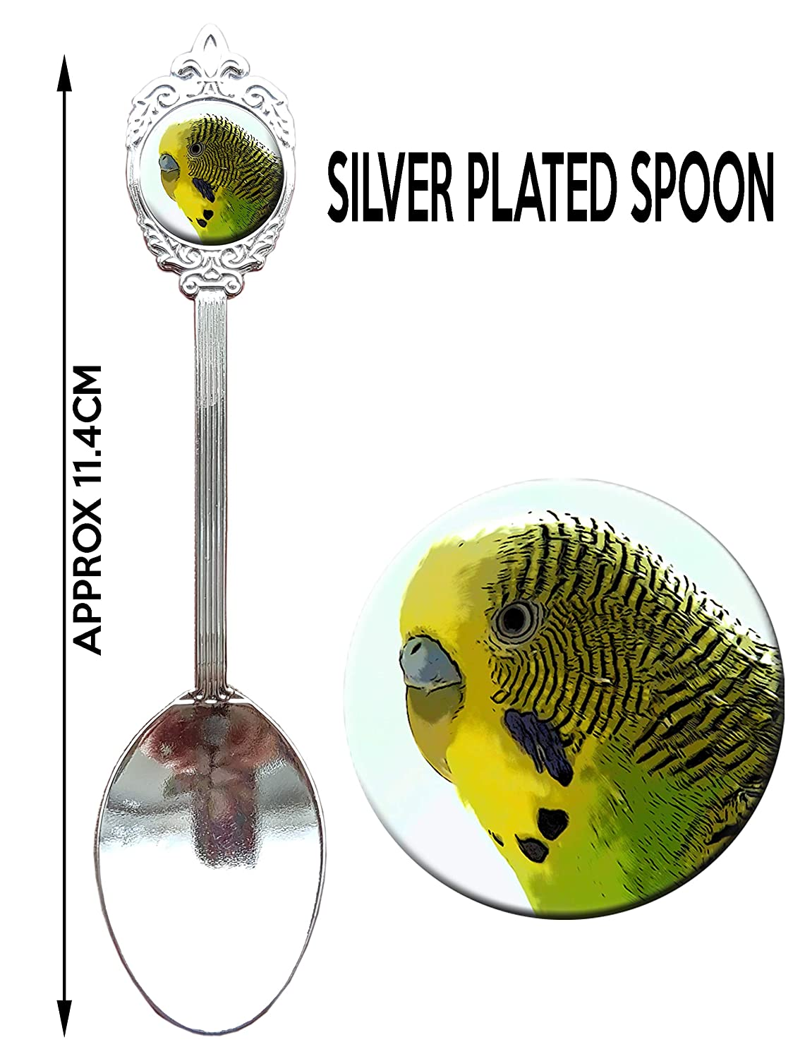Aviary Bird Parrot Gift. Green Budgie Budgerigar Gift Silver Plated Collectors Souvenir Spoon