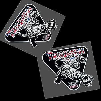 Aufkleber Triumph Tiger 955i