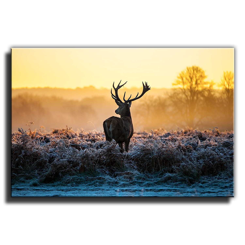 Canvas Culture - Stag Deer Landscape Canvas Art Print Box Framed ...