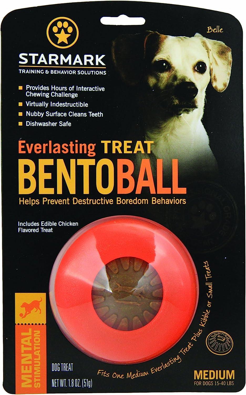 StarMark Everlasting Bento - Bola para Perros