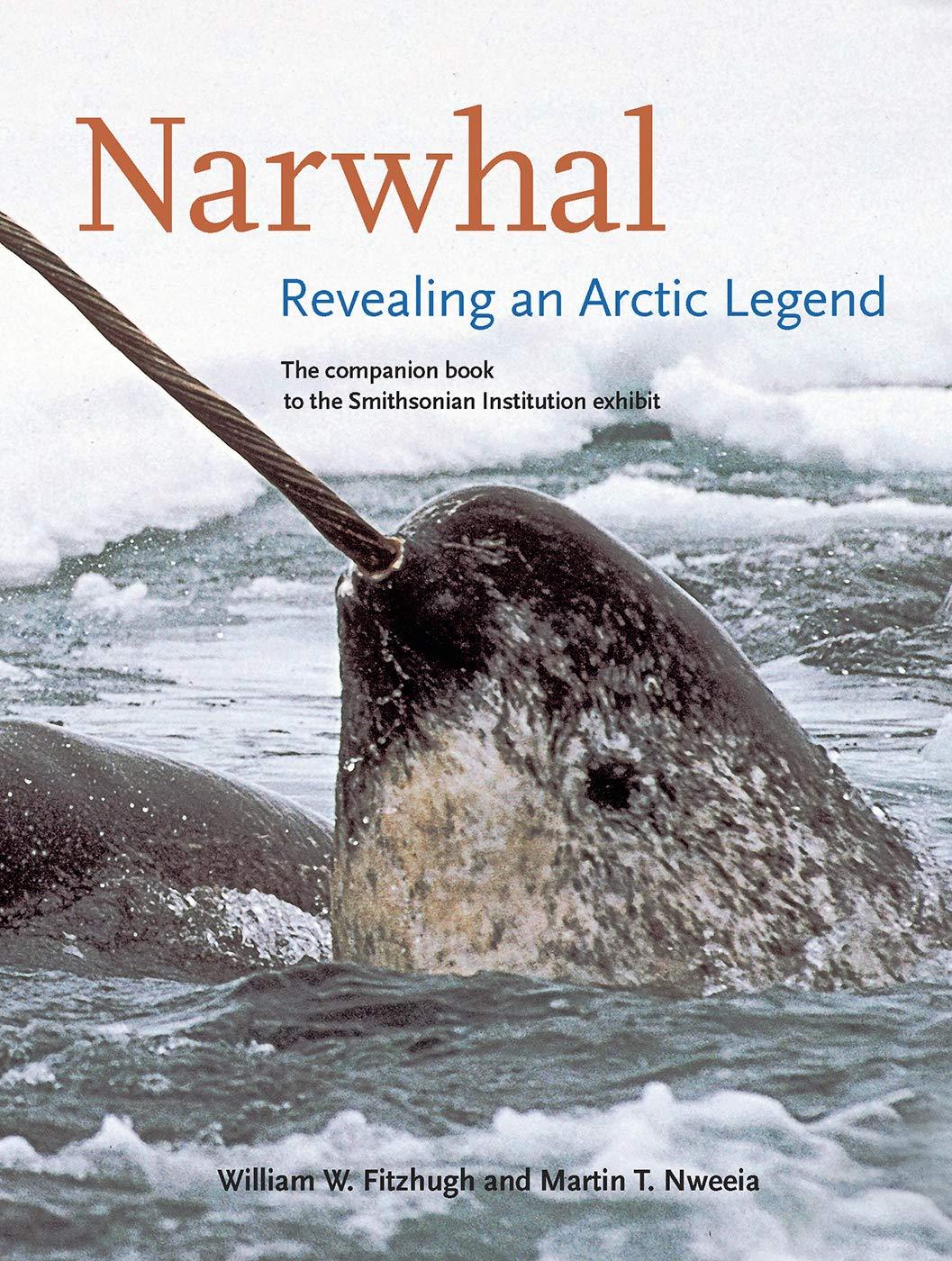 Image result for narwhal