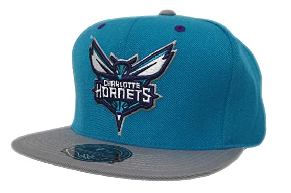 low priced fc794 f00ec Charlotte Hornets Mitchell and Ness NBA Hornets Collection ...